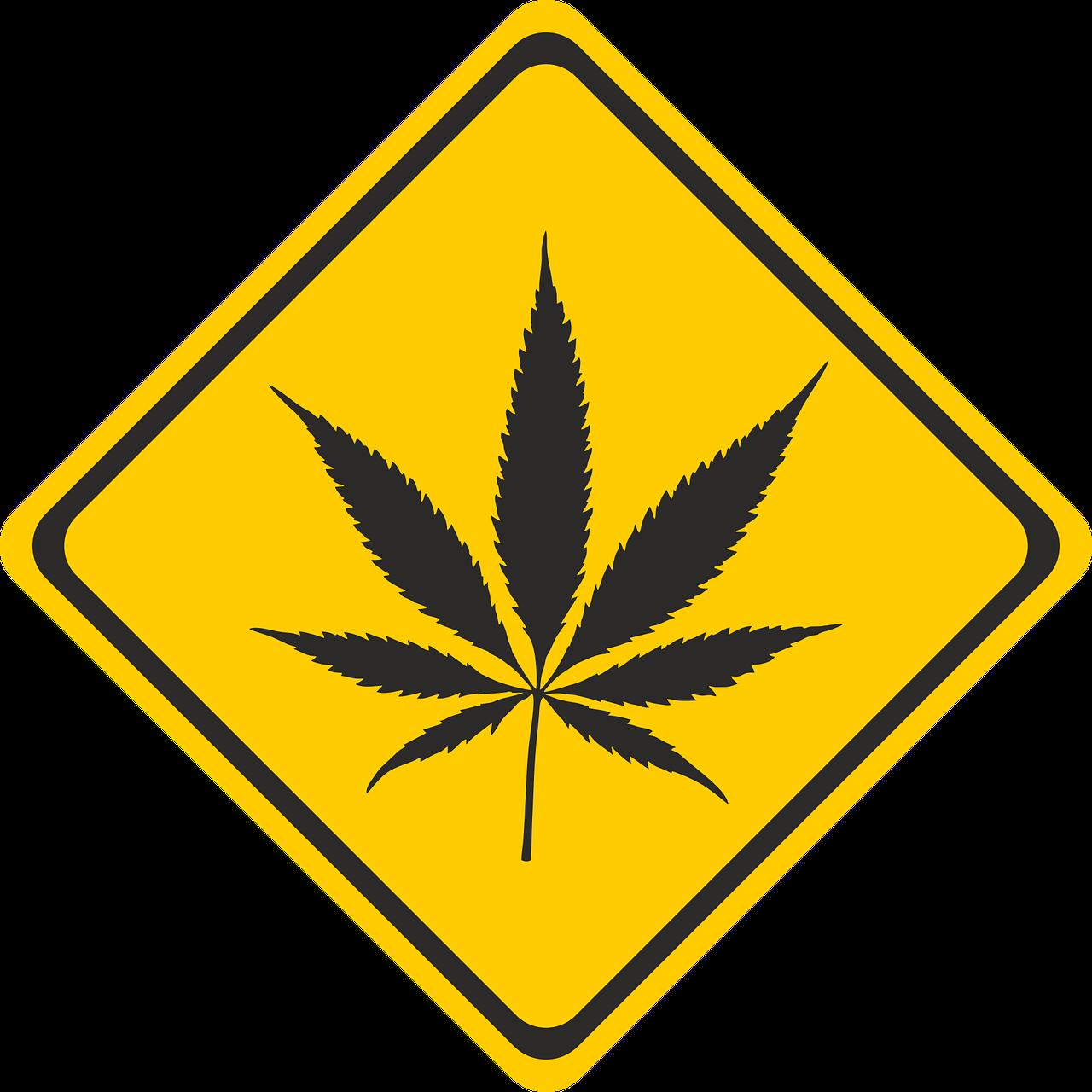 cannabis, hemp, intoxicant