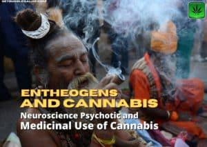 Entheogens and cannabis, medical, marijuana, weed, pot, shaman, religion