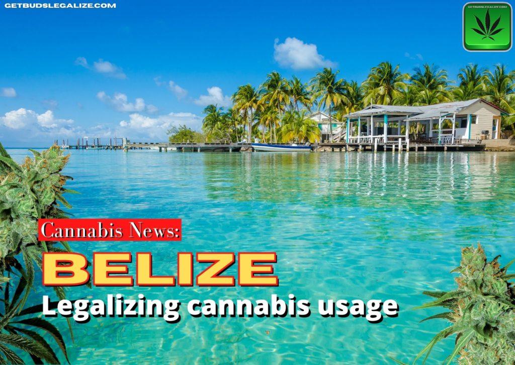 Legalizing cannabis usage in Belize, weed, marijuana, pot