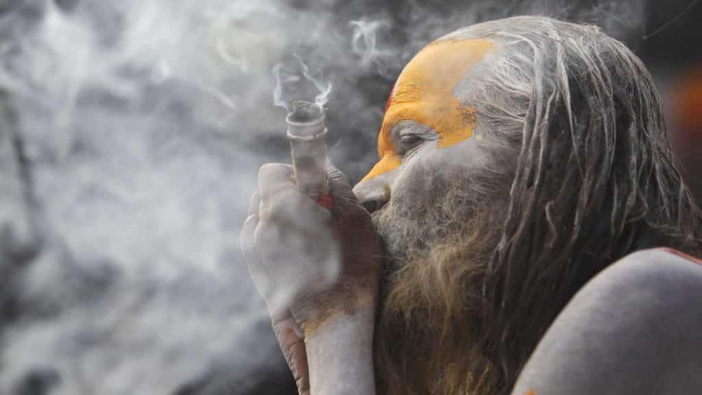 India's cannabis legalization guru weed smoking