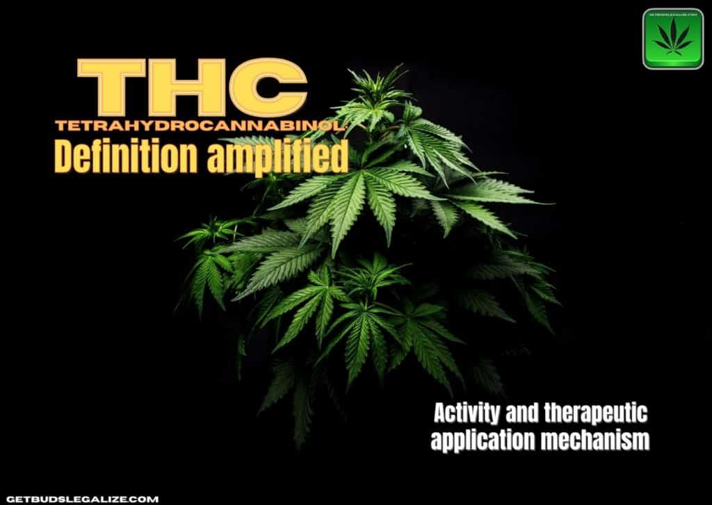 Tetrahydrocannabinol (THC): definition amplified, CBD, cannabis, marijuana, weed, pot, medical, theraphy