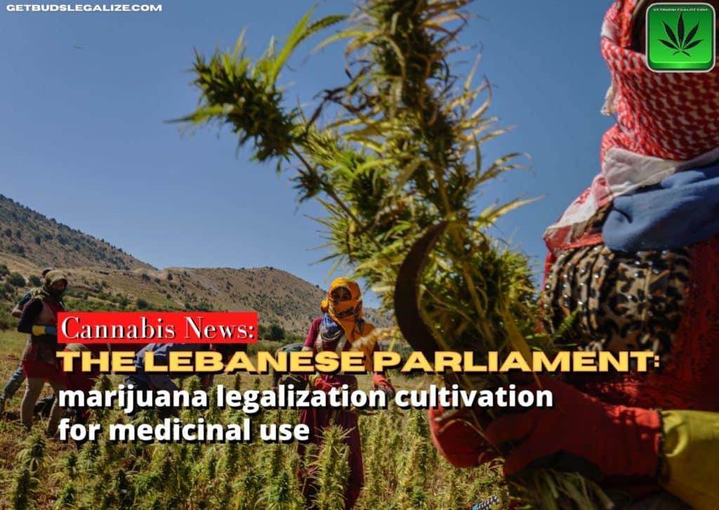 Lebanese Parliament marijuana legalization, cannabis, weed, pot