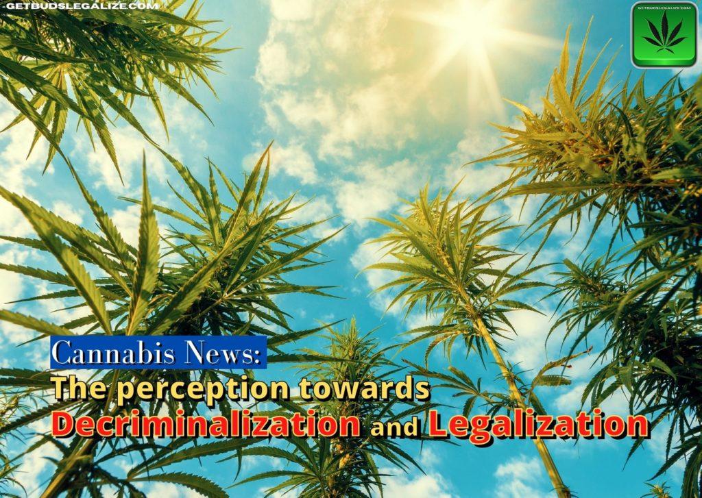 The perception towards decriminalization and legalization, cannabis, marijuana, weed, pot