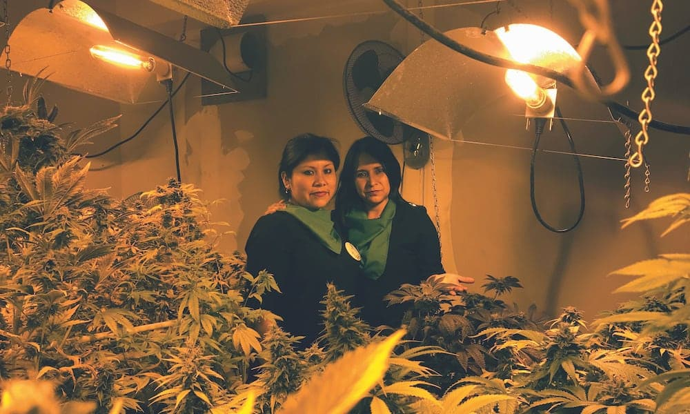 mothers-courage-peru--giving-her-son-medical-cannabis