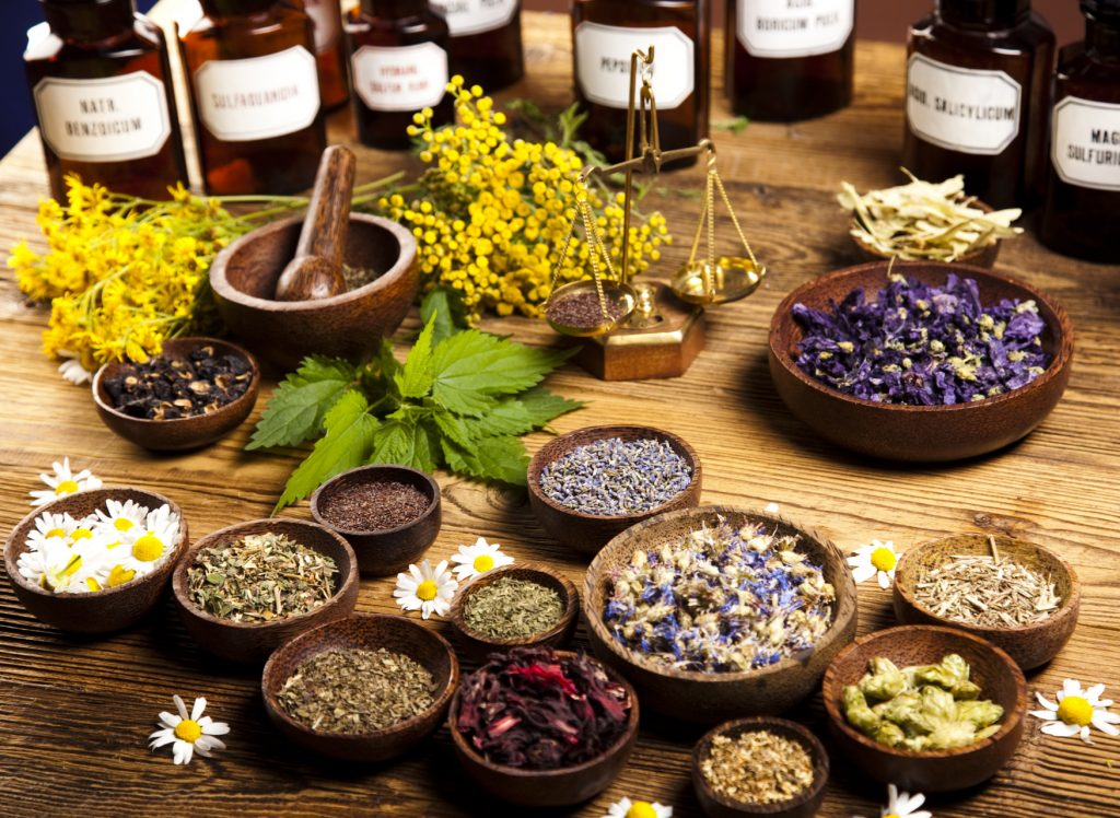 Herbalism and Cannabis: