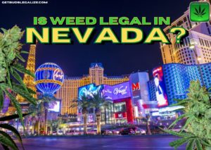Is weed legal in Nevada? Let us find out, CANNABIS, MARIJUANA, WEED, POT, LAS VEGAS