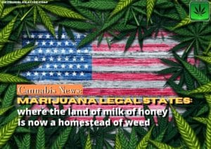 Marijuana Legal States:, Usa, weed, cannabis, pot, legalization