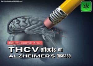 THCv Effects on Alzheimer's disease, medical cannabis news, marijuana, pot, weed