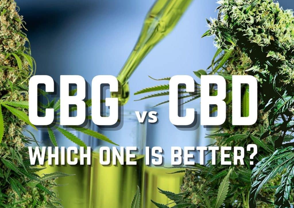 CBG vs CBD: which one is better?, cannabis, weed, marijuana, pot