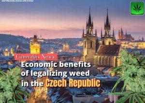 Economic benefits of legalizing weed in the Czech Republic, Praga, cannabis, marijuana, pot