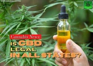 Is CBD legal in all states?, legalization, weed, pot, marijuana