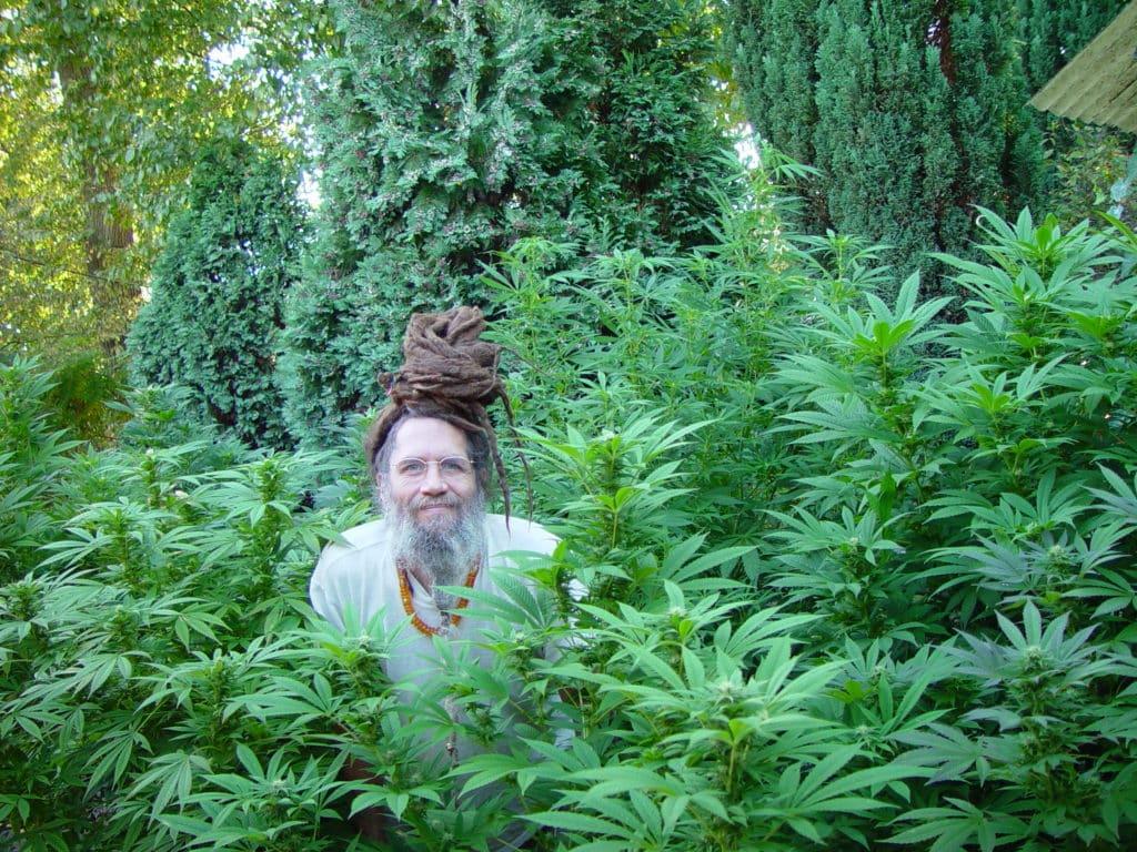 cannabis strain history, soma seeds