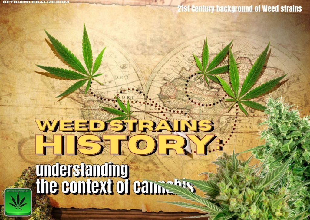 Weed strains history:, skunk, haze, cannabis, marijuana, pot, Jack Herer