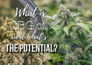 What is CBG oil and what's the potential?, weed, marjiuana, cannabis