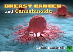 Breast Cancer and Cannabinoids: Latest research, treatment, medical cannabis, marijuana, weed, pot