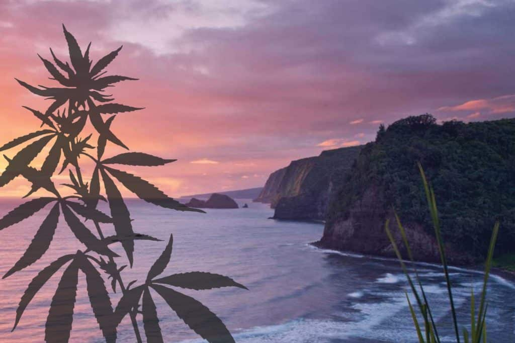 Is marijuana legal in Hawaii?, cannabis, weed, legalization