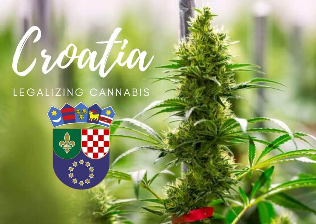 Is Croatia in the EU and legalizing cannabis?