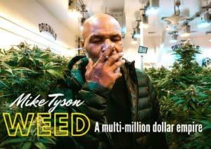Mike Tyson Weed: a multi-million dollar empire