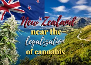 Time in New Zealand now to legalize cannabis