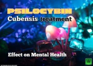 Psilocybin Cubensis: Effect on Mental Health, magik mushroom, cannabis, weed, pot, marijuana