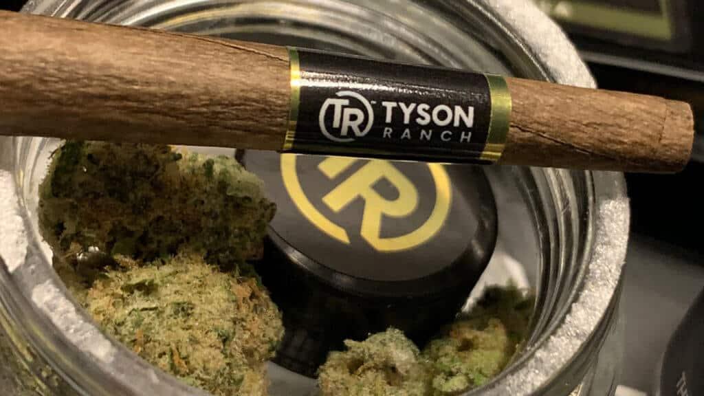 Mike Tyson Ranch, cannabis, weed, marijuana, pot, resort