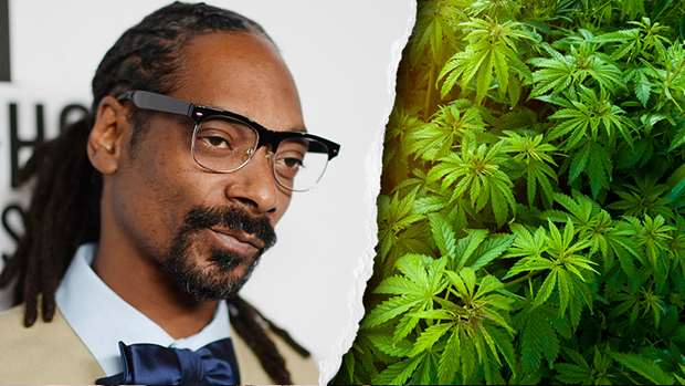 Snoop Dogg: Booming global cannabis business, leafs brand