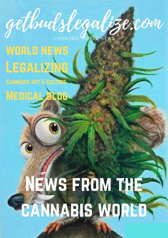 Getbudslegalize, Cannabis News