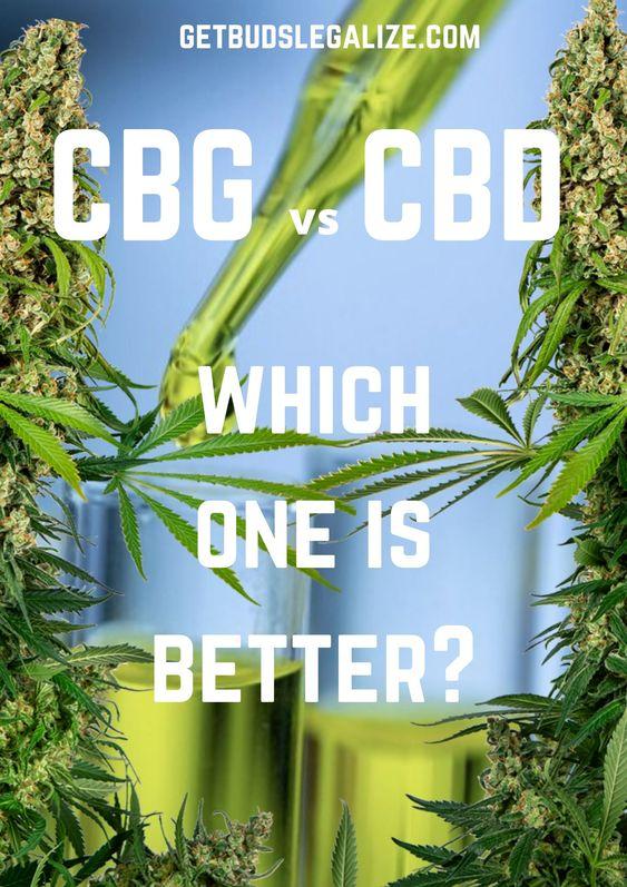 CBG vs CBD: which one is better?