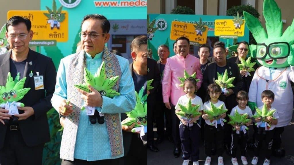 Thailand growing cannabis, rule