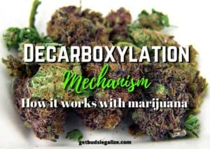decarboxylation-mechanism-how-it-works-with-marijuana, cannabis, weed, pot, cooking