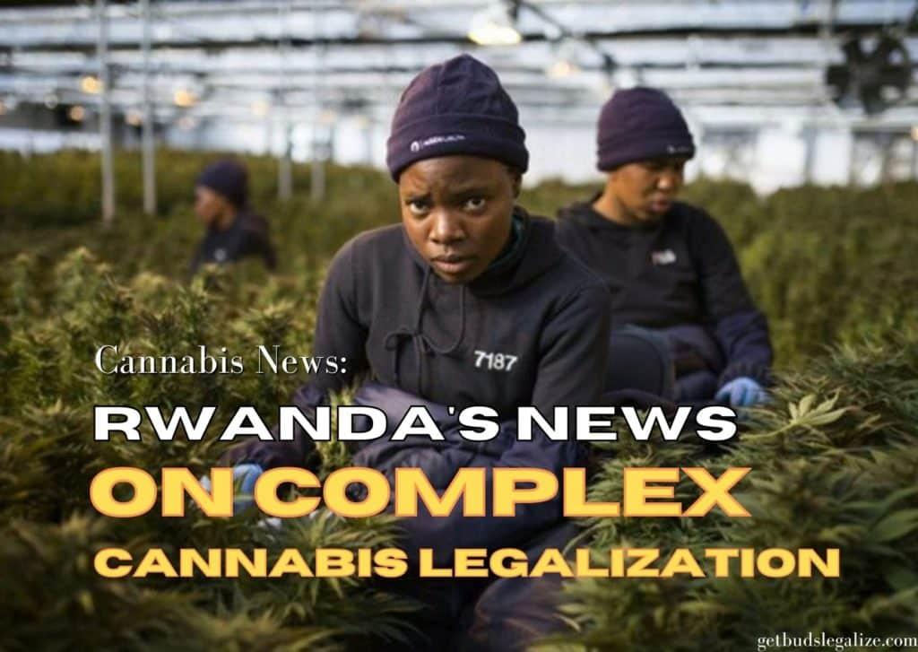 Rwanda's News on complex cannabis legalization, marijuana, weed, pot, plant, hemp