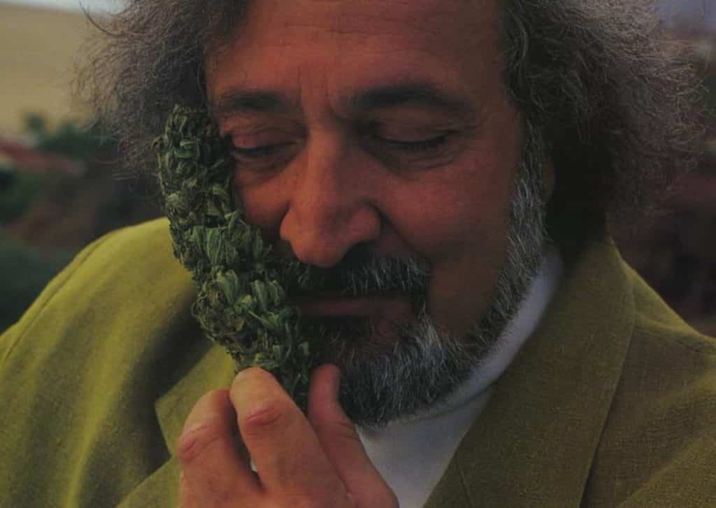 Jack Herer's Legacy continues, Ben dronkers , activist, cannabis, marijuana, weed, pot, man, story
