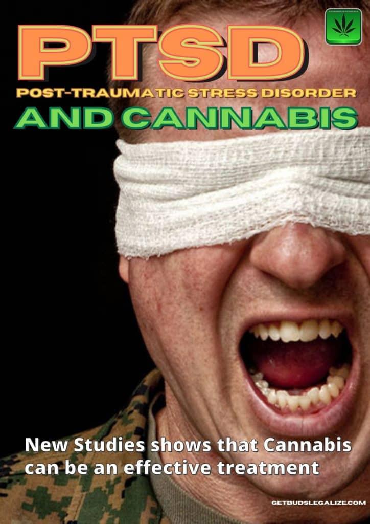 Post traumatic stress disorder and cannabis, PTSD, Medical Cannabis, marijuana, weed, pot