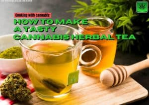 How to Make a Tasty Cannabis Herbal Tea,recipe, cooking, marijuana, weed, pot,decarboxylation