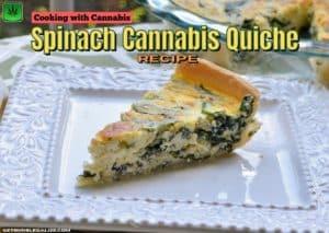 Spinach Cannabis Quiche recipe easy, baking, cannabis, marijuana, weed, pot, cooking