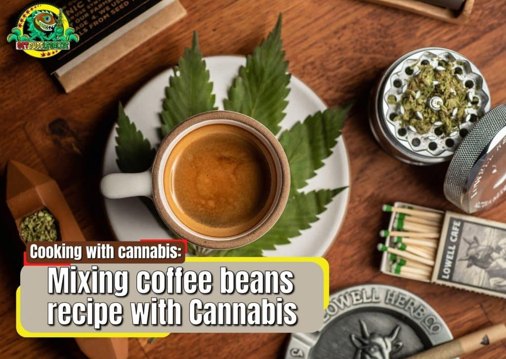 Mixing coffee beans recipe with Cannabis, marijuanam weed, poy, cooking, book, blog, news, review, strain