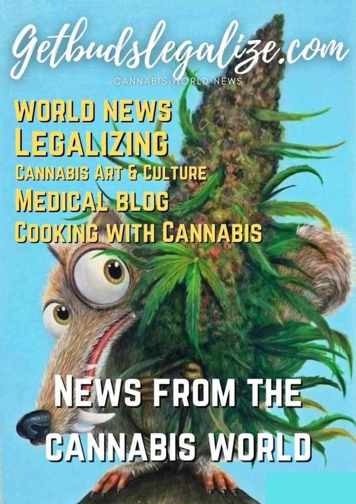 GETBUDSLEGALIZE, CANNABIS NEWS, MEDICAL CANNABIS, CANNABIS BLOG, CANNABIS RECIPE, STRAIN REVIEW, CANNABIS CULTURE, CANNABIS EVENTS, cooking, weed, marijuana, pot