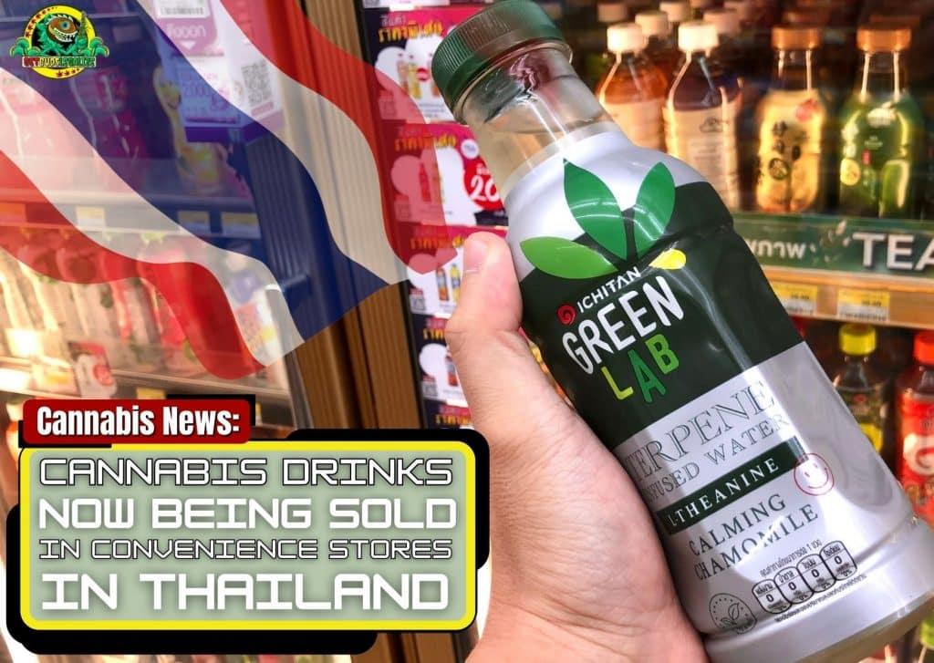 Cannabis drinks, convenience stores ; Thailand, businnes, marijuana, grow, weed, pot