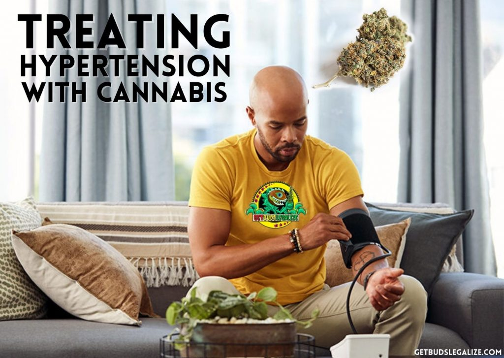 Treating hypertension with Cannabis, marijuana, medical, pot, plant, weed, high pressure, stroke